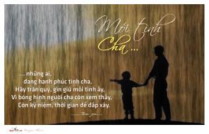 Hãy yêu thương cha mẹ nhiều hơn nữa